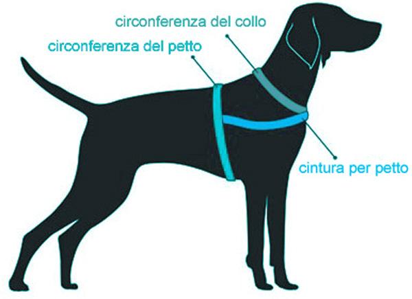 Come mettere la pettorina per cani