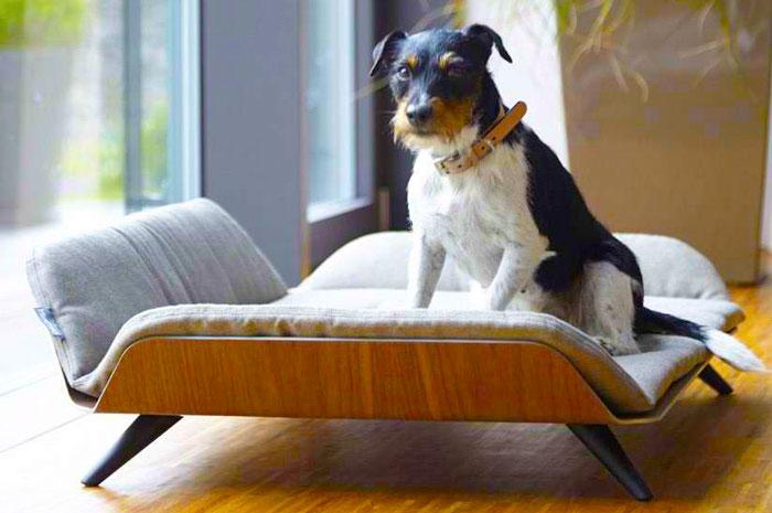 Cuccia da interno per cani di taglia grande