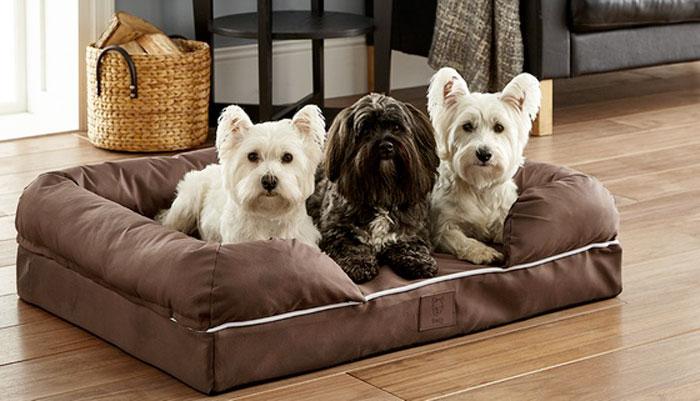 Poltrona xxl per cani