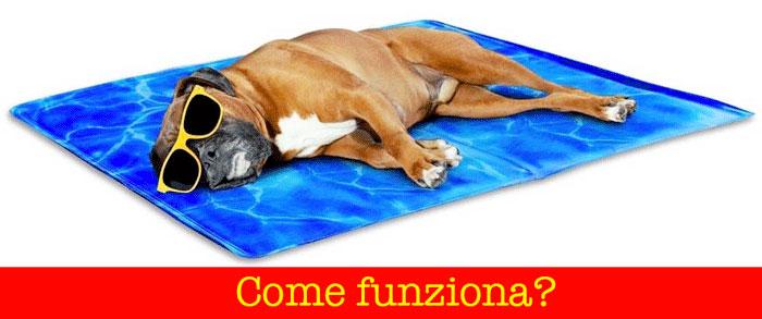 Come funziona il tappetino rinfrescante per cani
