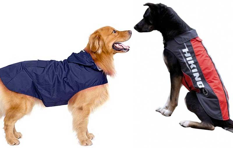 Migliori impermeabili per cani
