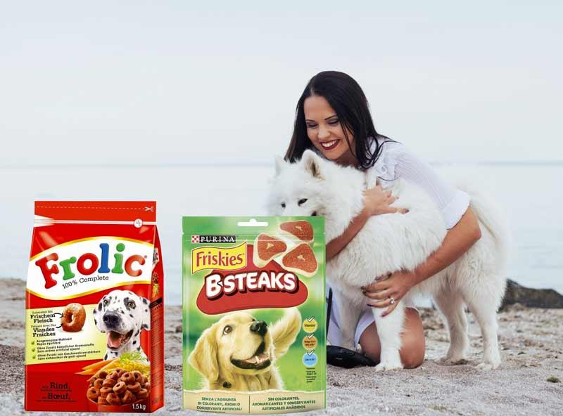 Migliori premietti per cani